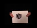 Оптическая иллюзия или обман зрения