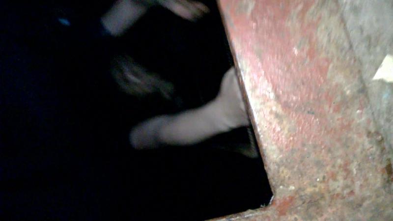 фильм ужасов: Изгнание парасенка из ада.