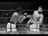 Muhammad Ali Tribute - New