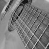Гитаристы-композиторы XXI
