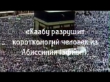 о Аллаh, не дай нам дожить до этих дней. 😩😥