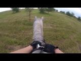 Horseback ridingГалопРысьВерховая прогулкаЛето