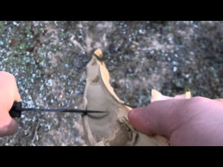 Hidden Florida's Bamboo Fire Saw How-to HD Friction Primitive Fire Tutorial
