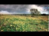 Ralph Vaughan Williams - The Lark Ascending