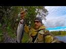 Рыбалка в Северной Карелии День 3-4 Первый хариус