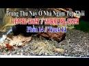 CUỘC SỐNG THIÊN NHIÊN - TÉP THỦY SINH PHẦN 14 - TRUNG THU NÀY Ở NHÀ NGẮM TÉP CẢNH.