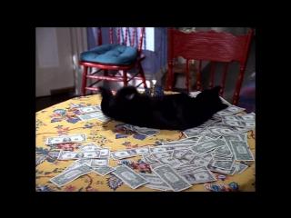 Я богат! (Сабрина - маленькая ведьма 3х12)