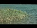 Фильм Соната над озером 1976 драма