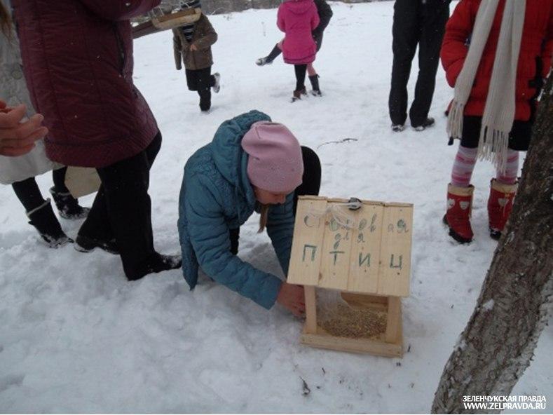 В Исправной школьники «Покормили птиц зимой»