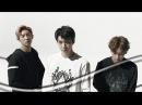 Edit EXO Skechers CF Mix All Members