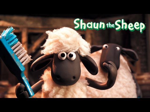 Shaun the Sheep Full episodes 9 compilation | Season 3 | Барашек Шон все серии подряд