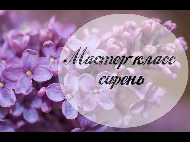 Сирень из гофрированной бумаги. Мастер-класс / Lilac of corrugated paper. Master-Class