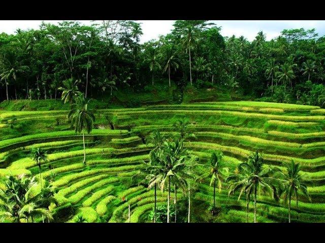 Бали Индонезия / Bali Indonesia 4k Ultra HD