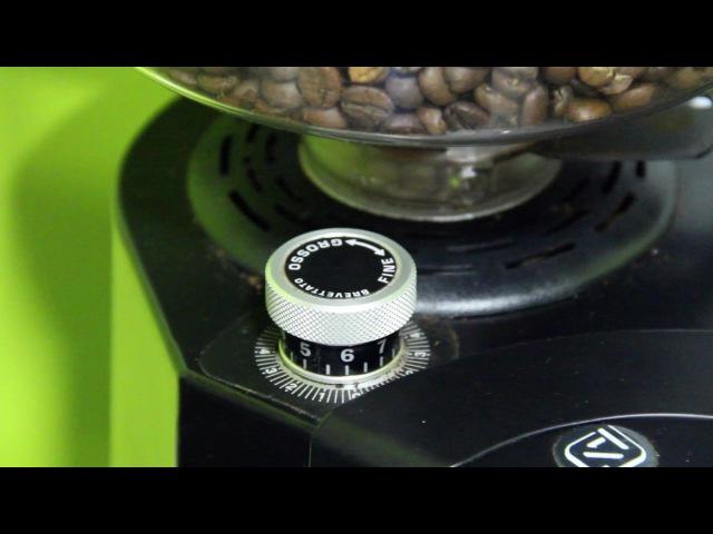 Франшиза Coffee In (кофе с собой). Обучение Бариста. Урок №3. Настройка помола