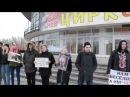 За запрет цирков с животными АЗЖ-КР 26.02.2017