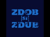 Zdob si Zdub - Dunarea