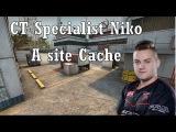 CT Specialist Niko - A Site Cache