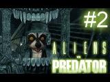 Alien vs Predator 2010 #2 (Чужой: По стелзу)