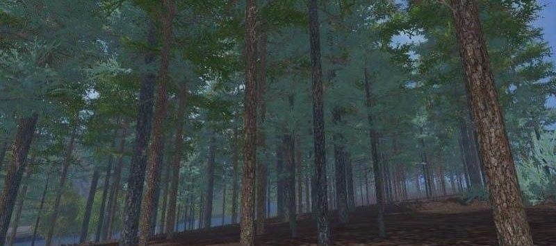 Купить дерево «Голубая...