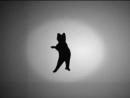 иллюзия вращения кошки