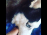 karanova_xenia video