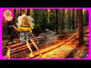 Барби Мультик с куклами Видео с игрушками для девочек Мультфильм для детей Жизн ...