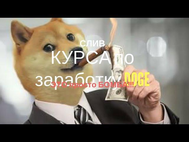 Слив сенсационного, актуального и рабочего курса по заработку DOGE 24 мая 2017