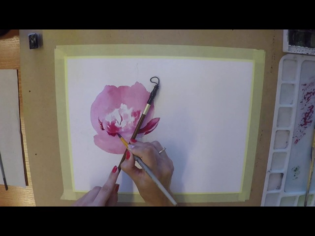 How to draw a peony watercolor