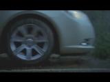 Веселая реклама шин Bridgestone c бобром