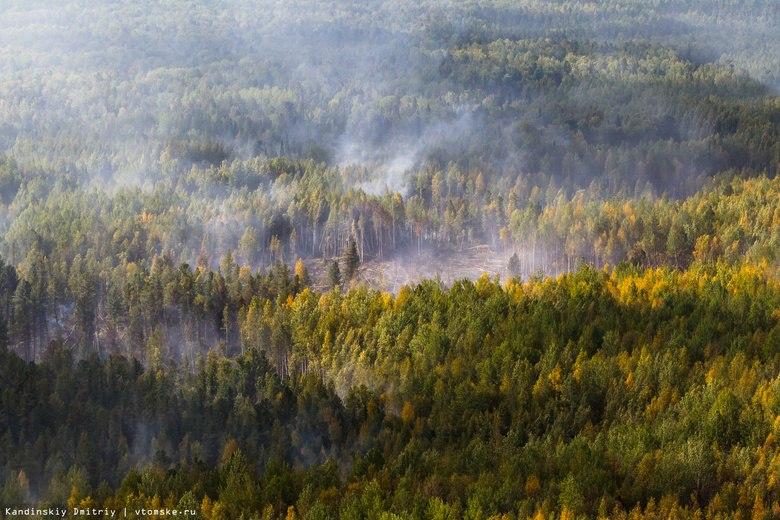Более 1 тыс гектаров леса сгорело в Томской области с начала года