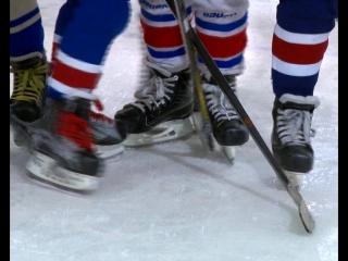 Вернется ли большой хоккей в Саратов?