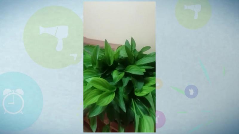 Цветьюб_3 от Дануты