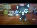 Петшоп кошка стоячка