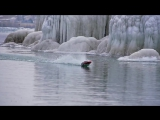 Traxxas Spartan - Great Lakes Arctic Adventure