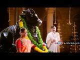 Новости • Правильная индийская свадьба