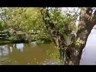 Діма Бойчук - Live