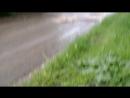Новая дорога после дождя