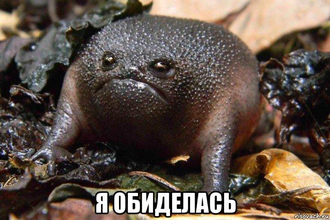 Алевтина Могутова |
