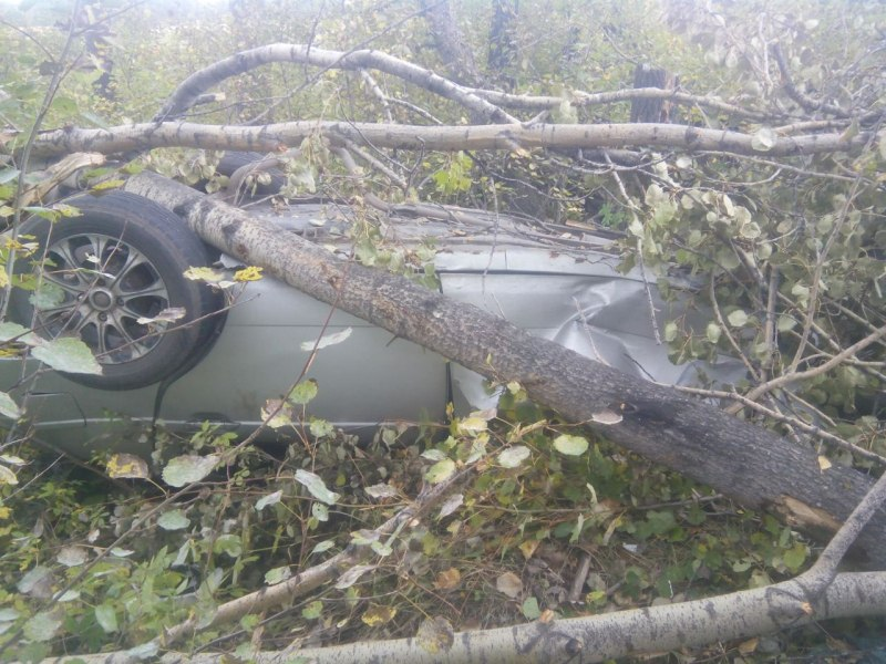 В ДТП на автодороге Кожевниково - Старая Ювала  погибло 2 человек