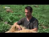 Кевин Ричардсон - Заклинатель львов HD 1080