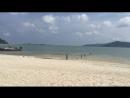 🌴🌞🌴Дикий пляж острова Самуи🌴🌞🌴 #samui