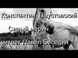 Константин Паустовский Сивый мерин читает Павел Беседин