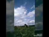 l.e.g.e.n.d.a.r.y_man video