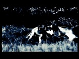 FJAAK - Wolves