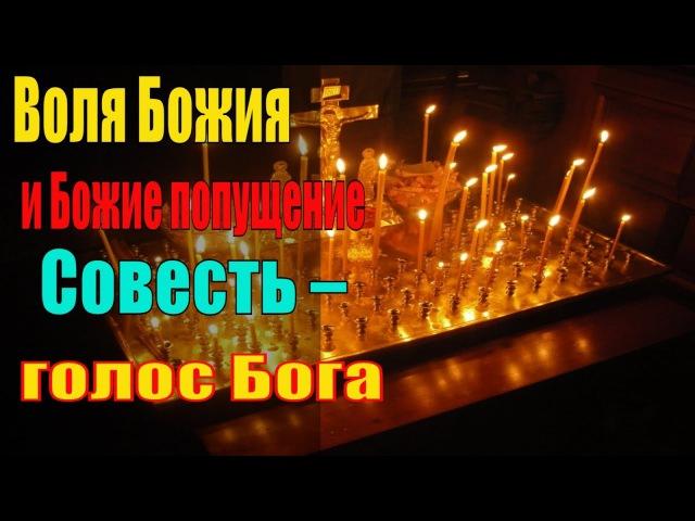 Воля Божия и Божие попущение Совесть голос Бога