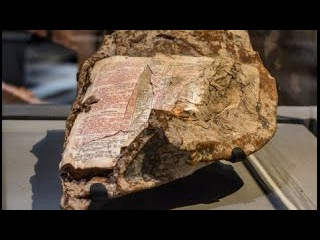 Bible Page Found Fused to Steel From World Trade  Center… What It Said Will Blow Your Mind!