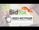 BidFox: инструкция для Рекламодателя