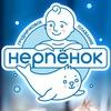 """""""Нерпёнок"""" центр грудничкового плавания 03"""