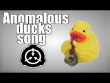 Anomalous ducks song