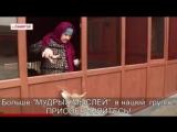 Житель Чечни приручил дикого волка у себя дома